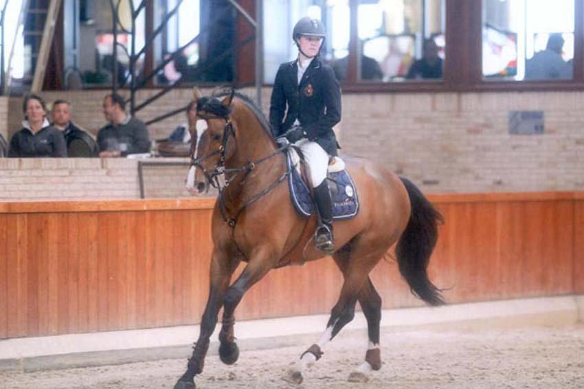 T is voltaire voltaire x ramiro picobello horses for Cid special bureau episode 13
