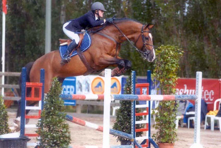 39 t is voltaire voltaire x ramiro picobello horses for Cid special bureau episode 13